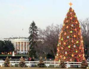 Navidades en Washington, D.C.