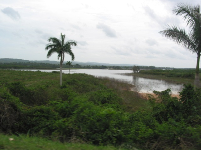El campo cubano