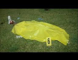 El cadáver de Trayvon Martin sobre la hierba