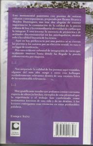 "Contraportada de ""Catedral sumergida"""