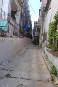Durante mi infancia, del otro lado de la casa  an un area de cemento de un ancho similar a éste, que daba al garaje, jugábamos a los pasos americanos